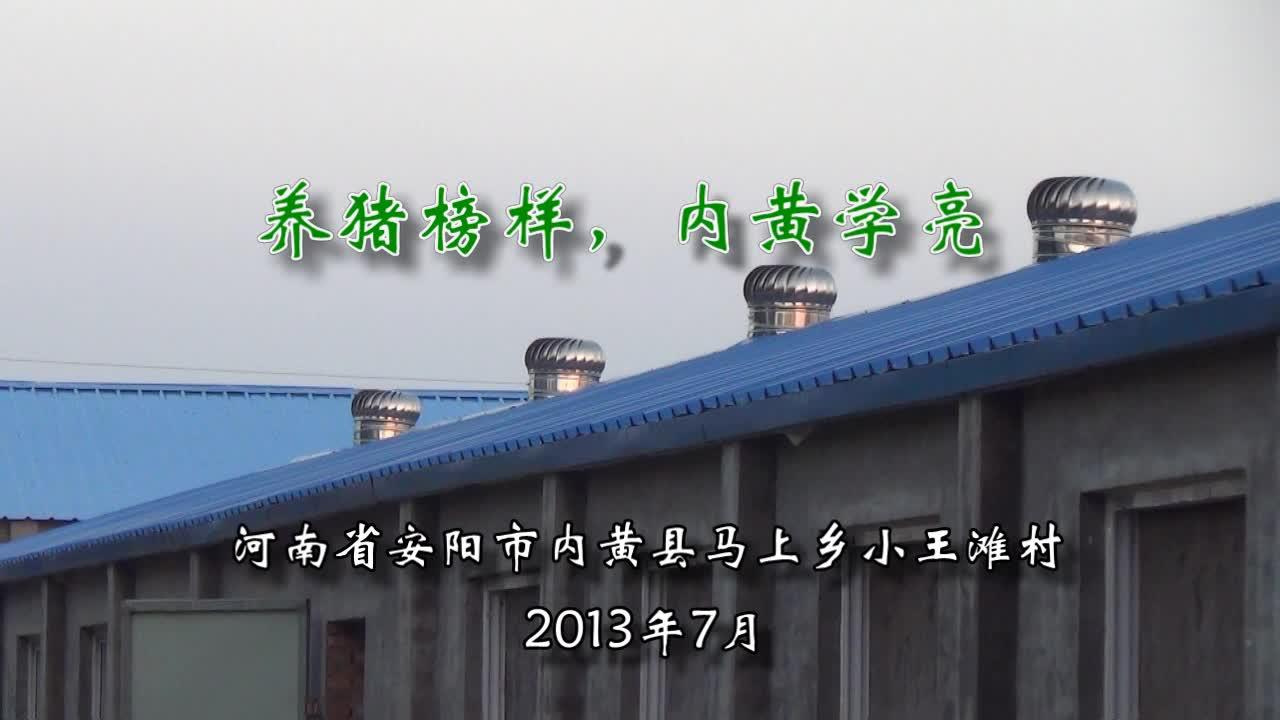 河南省安阳市:养猪榜样,内黄学亮