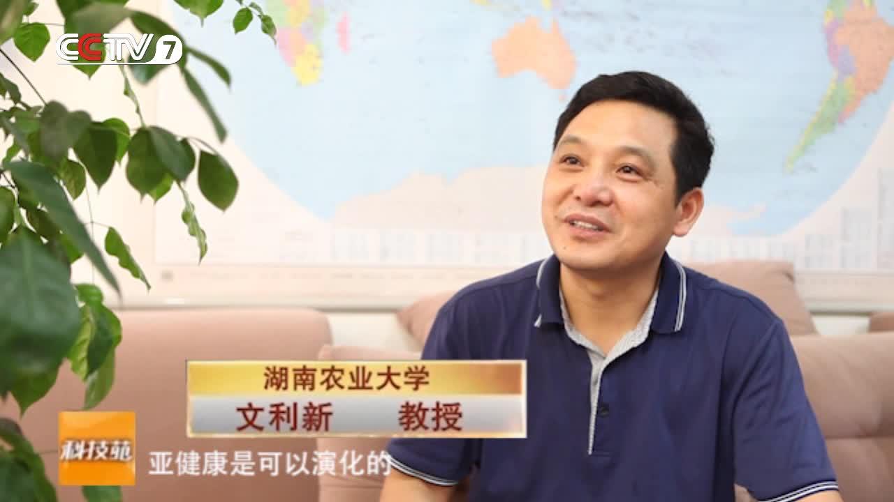 CCTV7央视报道贝博体育保健养猪技术