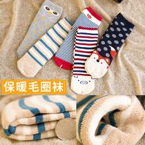 冬季加厚袜子女士中筒卡通日系棉袜保暖长袜毛巾袜纯棉女袜秋冬款