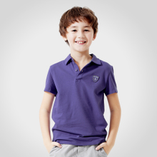 Annai children boys short sleeve t-shirt lapel 2013 new summer children's clothing big boy sport t-shirt EB321009