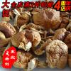 滑子菇干货/珍珠菇/小鸡黄蘑菇/东北特产滑子蘑/3件包邮/250克