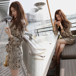 Dadongmen popular Korean style chiffon ladies dress Seasons