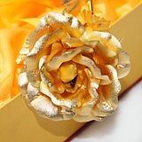 U.S. Astec Gilded ornaments the knot down alluvial gold wedding gifts wedding gift ideas wedding engagement gift ornaments