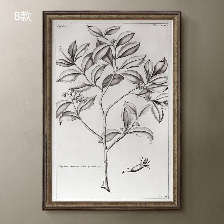 Фреска 5折特惠/进口原版/美克美家风格装饰画/花鸟风景/达尔文笔记2款