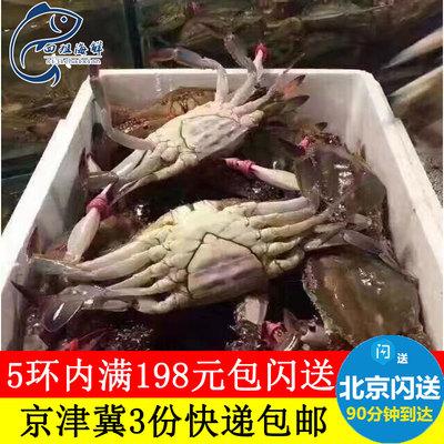 四姐海鲜 肉海蟹公蟹母蟹沙母蟹兰花蟹满肉蟹黄蟹