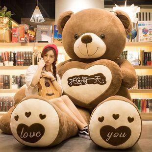 玩偶公仔抱抱熊熊猫布娃娃女孩生日礼物可爱大熊毛绒玩具泰迪熊