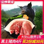 金蝉黑猪肉鲜猪肉4斤野猪肉五花肉烤肉农家土猪肉新鲜散养黑猪肉