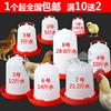 鸡用饮水器 饮水桶 鸡鸭鹅自动喂水器雏鸡喝水壶水槽养殖用品