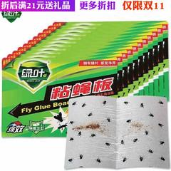 满绿叶粘蝇板 苍蝇贴 灭蝇纸 环保无害