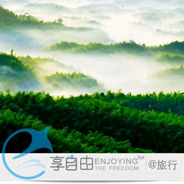 国内 四川旅游 成都出发 蜀南竹海二日跟团游/ 特价 暑假亲子游