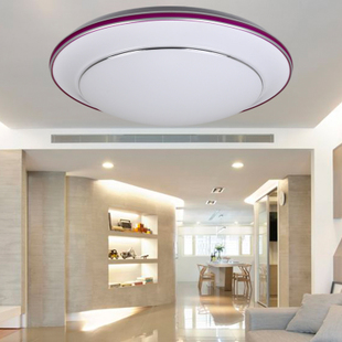 Stylish modern simplicity creative living room ceiling light romantic garden bedroom lamps Lighting  aisle lights 41,010