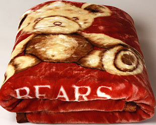 Dream of genuine Series - cute Bill Bear double-layer thicker super soft quality blanket / raschel childrens blankets