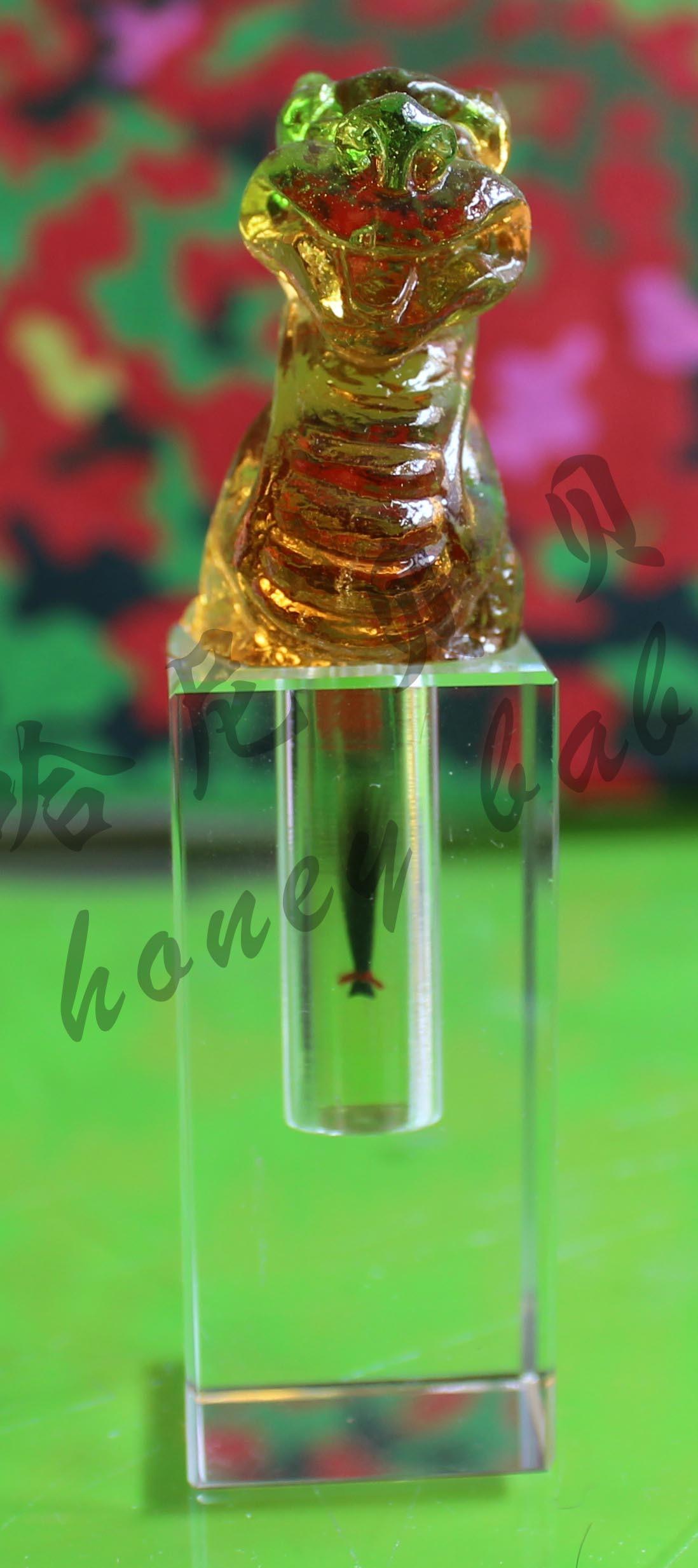 Детский локон в стекле 青岛厂家制作*胎毛脐带章*飞龙章a款