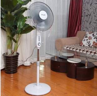 Card Dili Asia Fan Stand Fan FS-40 (F510) timed three blades mute stalls shook his head genuine