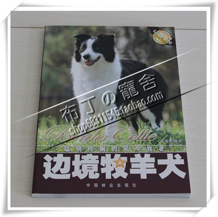 Border Collie dog books dog training books dog training books dog training dog supplies dog training materials