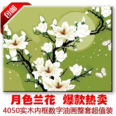 The new digital painting free shipping 40 * 50 DIY moon orchid flowers painted decorative painting living room bedroom