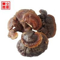 买3件送1件  善世嘉贡西藏特产野生灵芝正品保证纯野生