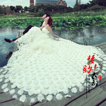 The new big trailing lace wedding photography studio theme clothing Q31 couple photo on clothing