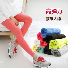 Optimal secret son South Korea maternity chun xia han edition vogue's belly pregnant women leggings elastic cultivate one's morality pants bag mail