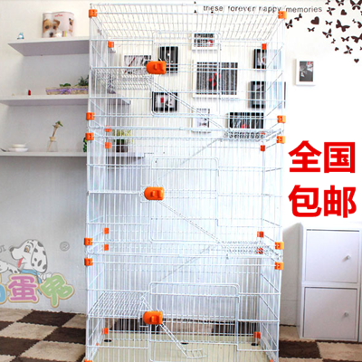 Rascal King chinchillas three chinchillas cage hammock garden bowls send most national mail
