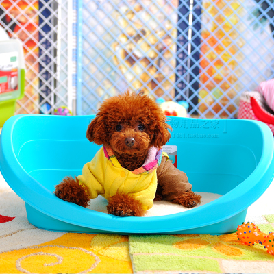 Constant shipping Teddy kennel soft plastic kennel pad to send sticky hair damp seasons available large kennel