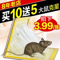 买10送5 粘鼠板超强力老鼠贴驱鼠灭鼠器夹药抓老鼠胶捕鼠神器家用