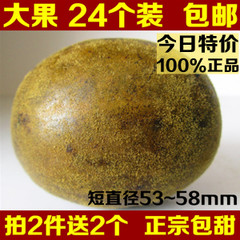 福寿堂 特级罗汉果 大果24个 广西桂林永福 罗汉果茶