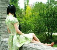赵姑娘原创立领复古蝴蝶重工刺绣大摆连衣裙中长裙