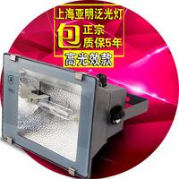 上海亚明泛光灯70w150w金卤钠灯户外防水牌照明树投射灯 ZY73