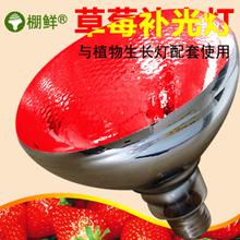 大棚补光灯价格_大棚蔬菜植物补光灯植物生长灯_植物补光灯价