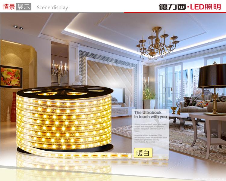 светодиодный дюралайт Delixi  LED 3528 60 - 1